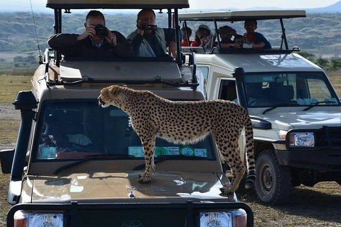 Activities in Lake Manyara National Park