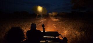 Night Game Drives in Lake Manyara national park
