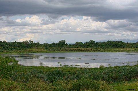 Beauties of Arusha National Park